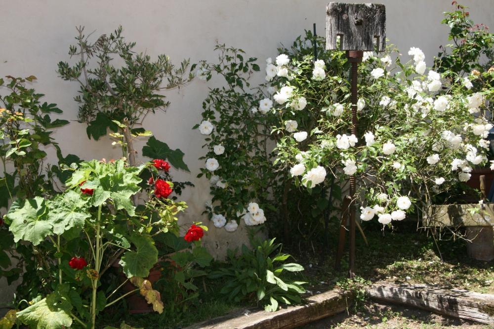 Une balade dans les ruelles et jardins du bourg (2/6)